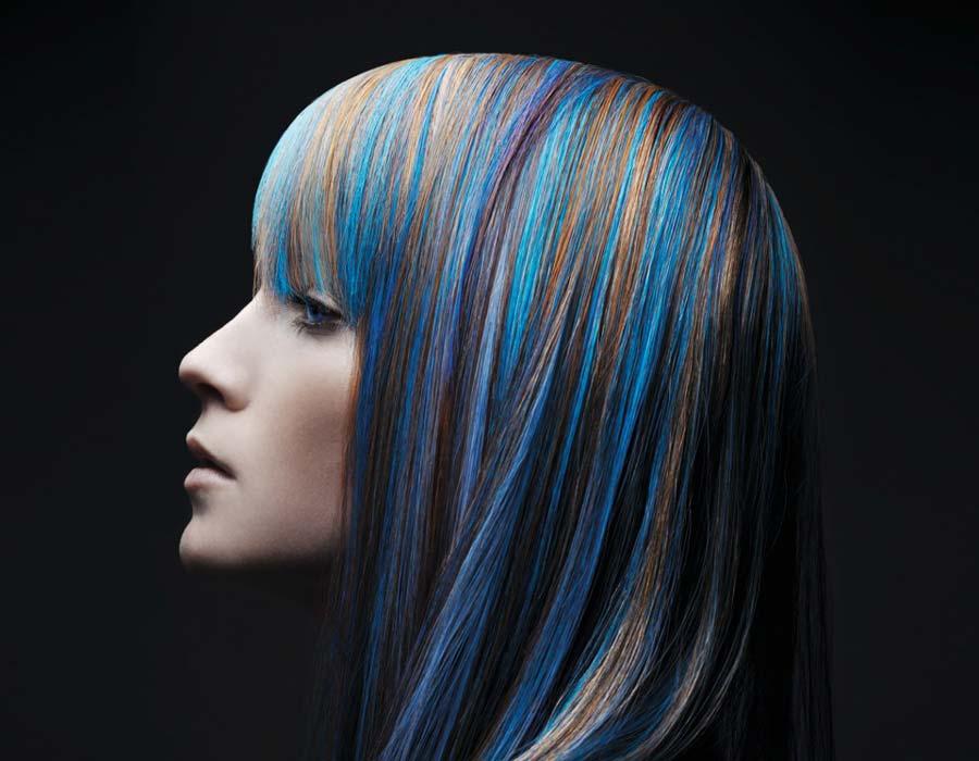 gutmann-coloration_04
